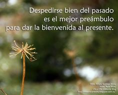 De Ola a Ola Caracola Blog Decir No, Blog, Movie Posters, Google, Frases, Peace, Get Well Soon, Life, So Done