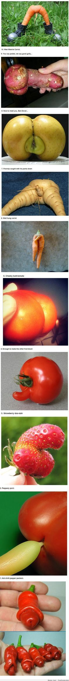 Top 10 Hilarious Pictures Of Fruits And Vegetables Funny Vegetables, Veggies, Funny Fruit, Bizarre, Food Humor, Adult Humor, Funny Posts, The Funny, Mother Nature