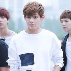 Taehyung meu próprio primo! Né? @hadeukaerihae