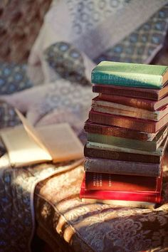 August 9 Happy Book Lovers Day!
