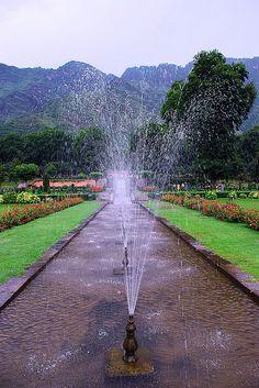 Nishat Mughal Garden, near Srinagar, Kashmir, India