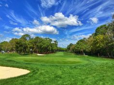 Blue skies, green grass. Perfect golf weather. Home of the Valspar Championship at the innisbrook Resort in Palm Harbor, Fl. March 10-13, 2016 #GolfsLuxuryLiving, #PGA, #Golf