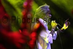 Tolmin, 14/08/2015 - OVERJAM REGGAE FESTIVAL 2015 - Yellow Stage - MAX ROMEO - Foto © 2015 Elia Falaschi / OverJam  www.phocusagency.com - www.eliafalaschi.it #eliafalaschi #phocusagency #overjam #maxromeo
