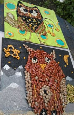 STUDENT ARTWORK - Gemma Flavin Owl mosaics with beans, rice and seeds on masonite panels with tacky glue and painted backgrounds 2nd grade www.gemmasgems.weebly.com