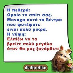 Funny Greek, Humor
