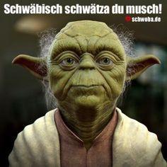 71 Besten Yoda Spruche Bilder Auf Pinterest Screwed Up Fanny Pics