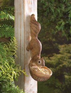 Scurrying Squirrel Bird Feeder