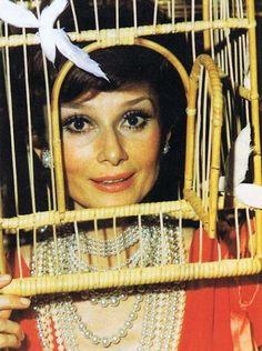 Audrey Hepburn engaiolada | Esta festa da família Rothschild foi a mais louca de todos os tempos