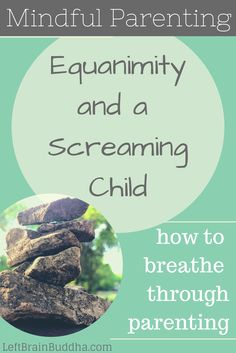 Mindful Parenting: equanimity and a screaming child