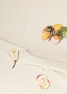 adam kremer fruit study on canvas (IV), 2013.