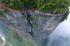 """""""A new glass walkway opened to the public in China this week. The terrifying walkway spans 100 meters along the side of Tianmen Mountain in Hunan's Zhangjiajie National Forest Park. Zhangjiajie, Glass Walkway, Glass Bridge, Scary Bridges, Tianmen Mountain, Giant Tree, Forest Park, No Photoshop, Paisajes"""