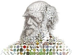 Charles Darwin for Time Magazine