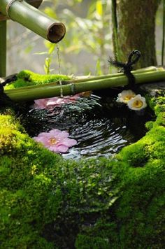Incredible Outdoor Brunnen Ideen & Tipps für Ihren Garten More than 35 amazing ideas of outdoor fountains and tips … Asian Garden, Japenese Garden, Water Features In The Garden, Garden Fountains, Dream Garden, Land Scape, Garden Inspiration, Beautiful Gardens, Garden Landscaping