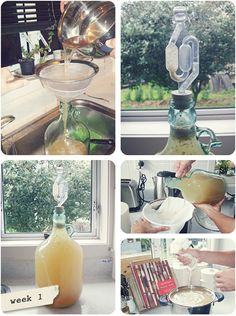 DIY Feijoa Wine – home brew