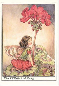 Cicely Mary Barker...Flower Fairy