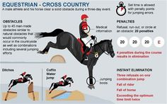 London 2012 Olympics: equestrian guide - Telegraph. Only sport where you are required to carry your medical info on your arm!