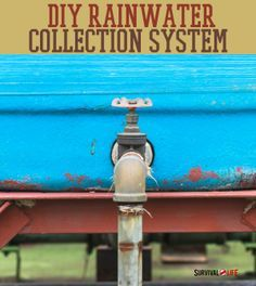 DIY Rainwater Collection System | DIY homesteading projects at survivallife.com #DIY #homesteading #homesteadingideas