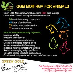 Order your Green Gold Moringa for your pets today!
