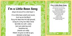 I'm a Little Bean Song Lyric Sheet (With Actions) - Contains lyrics for a song about beans - ideal for a Jack and the Beanstalk or Plants and Growing topic.