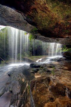 Brisbane Waters National Park, Gosford NSW.