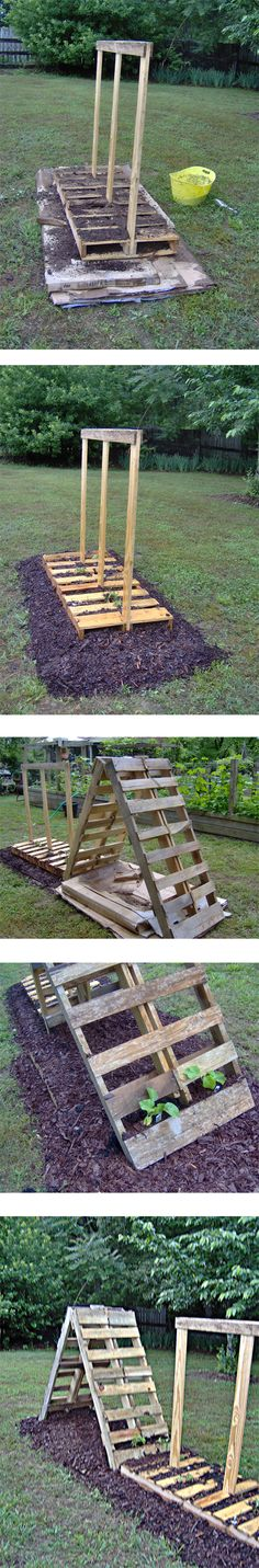 I've been seeing all these garden projects using pallets and figured it's time for me to give it a try. Being in the fireplace business we have access to all the cardboard and pallets we could ever...