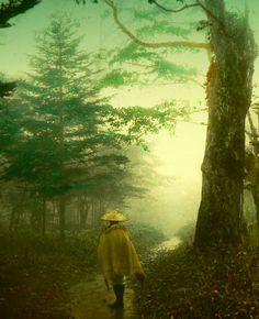Пилигрим на лесной тропинке. Япония, нач. XX в. / Фото дня / Моя Планета