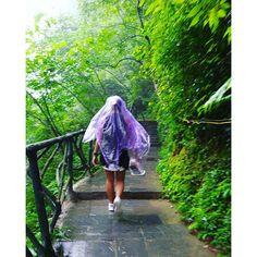 "【chinglmh】さんのInstagramをピンしています。 《天氣不似預期 但無阻我們要上山的決心, ¥5的""雨衣""為我們遮風擋雨😂😂 #張家界 #湖南 #山#我#忘記#這里 #的#名字#😂 #滑索#山林 #森林 #山頂#雨 #微雨#下雨 #rain #綠 #行山 #天氣不似如期 #景區 #旅遊 #blog#hk#hkig》"