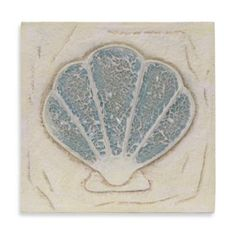 Scallop Shell Resin Wall Plaque - BedBathandBeyond.com