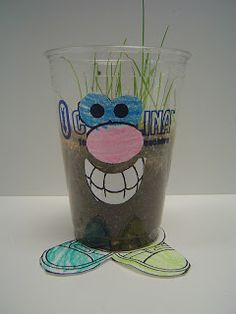 First Grade Class: Grass Heads Elementary Science, Science Classroom, Teaching Science, Science Activities, Science Projects, Science Experiments, Elementary Schools, Science Ideas, Teaching Ideas