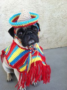 I NEED TO MAKE THIS FOR PRECIOUS,OMG HOW FREAKING CUTE!!!    Poncho& Sombrero set for dogs-Costumes-Poncho for Dogs-Cinco De Mayo-Pugs-Novelty Hats-Hats for Pugs-Pugs