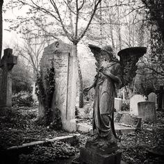 THE GOOD ANGEL WATCHING OVER ALL THE LITTLE ANGELS WHO WENT TO HEAVEN WAY BEFORE THEIR TIME……..ccp