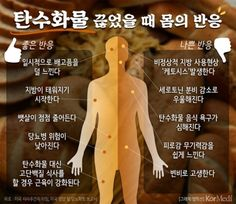 [정은지의 만약에... :: 네이버 뉴스 Health Diet, Health And Wellness, Health Fitness, Life Hacks Youtube, Sense Of Life, Medical Anatomy, Muscle Anatomy, Medical Information, Loose Weight