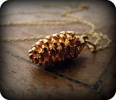 Pine cone love this my grandmother and i would pick up pine cones