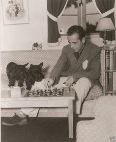 Humphrey Bogart and his scottie playing chess.  The Scottie won.