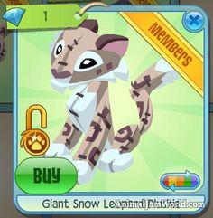 App Play, Diamond Shop, Animal Jam, Snow Leopard, Plushies, Patches, Animals, Animales, Animaux