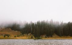 "itakephotosofallthethings: "" Are You Listening? Tipsoo Lake, WA View it on Flickr More photos by John Westrock on Flickr. """