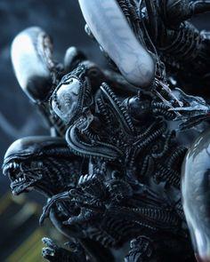 The aliens tato Brood Alien Film, Alien Art, Giger Alien, Hr Giger, Alien Isolation, Aliens Movie, Tyranids, Alien Vs Predator, Alien Worlds
