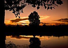 Tu la notte io il giorno così distanti e immutevoli nel tempo così vicini come due alberi posti uno di fronte all`altro a creare lo stesso giardino ma senza possibilità di toccarsi se non con i pensieri So cosa significa amore quando il giorno muore Antonia Pozzi