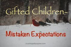 Gifted Children–Mistaken Expectations