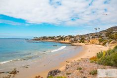 Ginger Detox Shot   Photos From Laguna Beach!