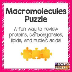 "This puzzle helps students review the 4 major macromolecules of the body: Lipids, Proteins, Carbohydrates, and Nucleic Acids. You will cut up the triangles and students will have to arrange them in order based on matching pairs. For example, one triangle might say ""nucleic acid monomer"" and students would align it with the triangle that says ""nucleotide.""Included are 4 versions."