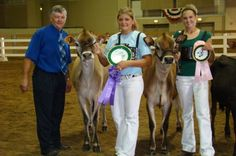 10 Tips for writing a better buyer's letter for your 4-H livestock project. Photo credit: ANR Communications | MSU Extension