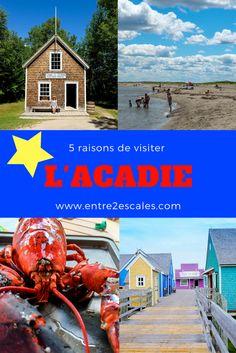 NOUVEAU-BRUNSWICK | 5 raisons de découvrir la côte acadienne cet été ~ ENTRE 2 ESCALES New Brunswick, Ontario, East Coast Canada, Acadie, Destinations, Backyard Projects, Canada Travel, Places To See