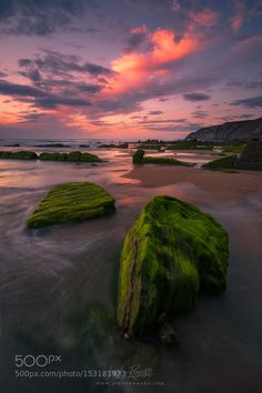 Green on the rocks by JokinRomero. Please Like http://fb.me/go4photos and Follow @go4fotos Thank You. :-)