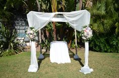 Birch Arch draped with ivory sheer fabric