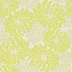 obi wallpaper in lime/pearl from sanderson. pompom collection.