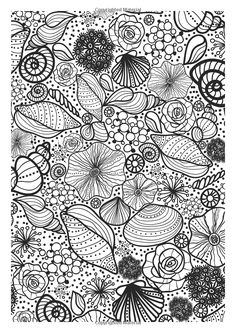 Shells : Underwater coloring page --> If you're in the market for the best coloring books and supplies including colored pencils, watercolors, gel pens and drawing markers, logon to http://ColoringToolkit.com. Color... Relax... Chill.