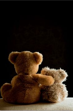 teddy bears ♥