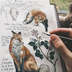 fox, art, and drawing image Art And Illustration, Landscape Illustration, Art Inspo, Kunst Inspo, Art Sketches, Art Drawings, Realistic Drawings, Arte Sketchbook, Sketchbook Inspiration