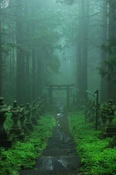 Colored Kumanoza Shrine on the drizzle- 霧雨の上色見熊野座神社 Misty Forest-Kamishikimi-kumanoimasu-jinja shrine, Kumamoto - Beautiful World, Beautiful Places, Beautiful Scenery, Beautiful Pictures, Japanese Landscape, Japanese Nature, Japan Travel, Beautiful Landscapes, Nature Photography